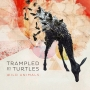 13. Trampled By Turtles - Wild Animals
