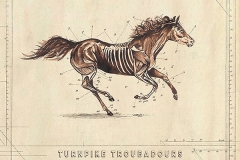 24. Turnpike Troubadours – A Long Way From Your Heart