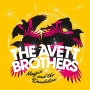 20. The Avett Brothers – Magpie and the Dandelion