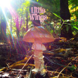 Little Wings – Last